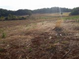 South Manchester, Manchester, Jamaica - Commercial/farm land  for Lease/rental