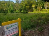 FarmAgriculture Land in Fellowship, Portland, Jamaica - Commercial/farm land  for Sale