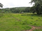 Commercial/farm land  For Sale in Rock River, Clarendon, Jamaica