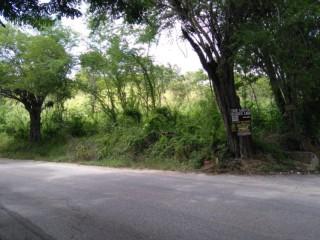 Residential lot For Sale in Luana, St. Elizabeth, Jamaica