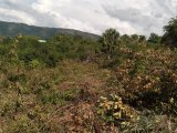 Mount Dawson, St. Catherine, Jamaica - Residential lot for Sale