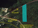 FALMOUTH, Trelawny, Jamaica - Commercial/farm land  for Sale