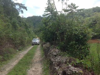 Residential lot For Sale in Mile Gully, Manchester, Jamaica