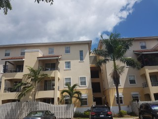 Studio Apartment For Rent in Kingston 10, Kingston / St. Andrew, Jamaica