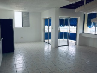 4 bed 3 bath Apartment For Rent in Gallery Apartments, Kingston / St. Andrew, Jamaica