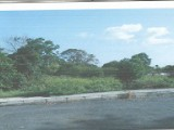 Norris, St. Thomas, Jamaica - Residential lot for Sale