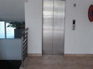 1 bed 1 bath Apartment For Rent in The Harloe, Kingston / St. Andrew, Jamaica