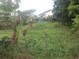 Cabbage Hill, Portland, Jamaica - Residential lot for Sale
