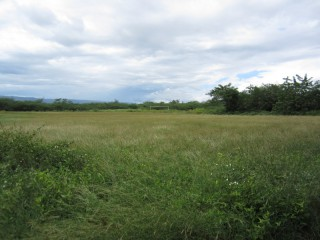 Residential lot For Sale in Rhymesbury, Clarendon, Jamaica