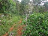 Smokeyvale, Kingston / St. Andrew, Jamaica - Residential lot for Sale