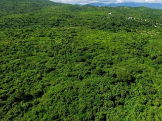 Rozelle St Thomas, St. Thomas, Jamaica - Commercial/farm land  for Sale