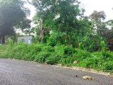 Lambs River, Westmoreland, Jamaica - Residential lot for Sale