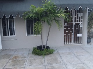 1 bed 1 bath Apartment For Rent in Meadowbrook area, Kingston / St. Andrew, Jamaica
