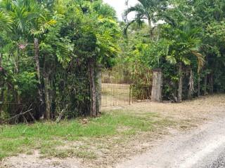 1 bath Commercial/farm land  For Sale in Unity, St. Mary, Jamaica