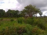 Newport, Manchester, Jamaica - Residential lot for Sale