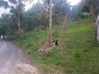 Land Part of Ramble, Hanover, Jamaica - Residential lot for Sale