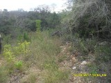Chapleton, Clarendon, Jamaica - Residential lot for Sale