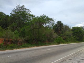 Commercial land For Sale in Spur Tree, Manchester, Jamaica