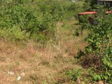 Phase 2 Westmoreland, Westmoreland, Jamaica - Residential lot for Sale