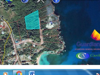 CayfieldBoston, Portland, Jamaica - Residential lot for Sale