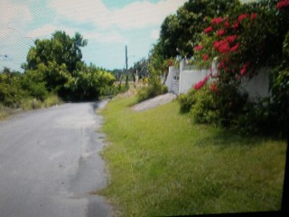 253 Pasture Drive  Sign PO St James, St. James, Jamaica - Residential lot for Sale