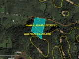 SHERWOOD CONTENT, Trelawny, Jamaica - Commercial/farm land  for Sale