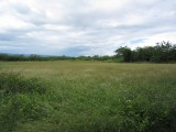 Clarendon, Clarendon, Jamaica - Commercial/farm land  for Sale