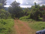Portland Residential Lot MLS12196, Portland, Jamaica - Residential lot for Sale