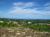 Commercial/farm land  for Sale in Westmoreland, Jamaica