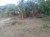 Woodstock Housing Scheme, Portland, Jamaica - Residential lot for Sale