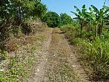Commercial/farm land  for Sale, Chapelton, Clarendon, Jamaica  - (3)