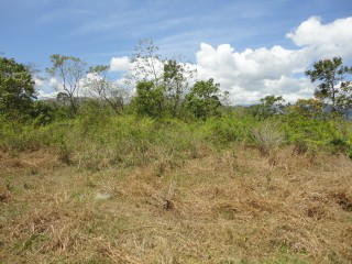 Residential lot For Sale in Blue Mountain Danvers Pen, St. Thomas, Jamaica