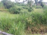 Thyme Town, Manchester, Jamaica - Residential lot for Sale