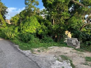 Residential lot For Sale in Salt Spring, St. James, Jamaica