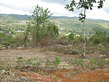 Twin Palms Estate, Clarendon, Jamaica - Residential lot for Sale