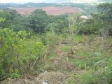 Ingleside, Manchester, Jamaica - Residential lot for Sale