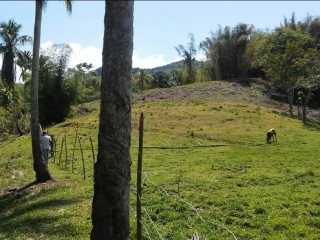 Commercial land For Sale in Lottery, St. James, Jamaica
