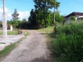 Residential lot For Sale in Petersfield, Westmoreland, Jamaica