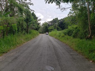 Commercial/farm land  For Sale in Watermount, St. Catherine, Jamaica