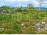 Residential lot For Sale in Porus, Manchester, Jamaica