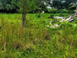LOT 165 WHITEHALL, Westmoreland, Jamaica - Residential lot for Sale