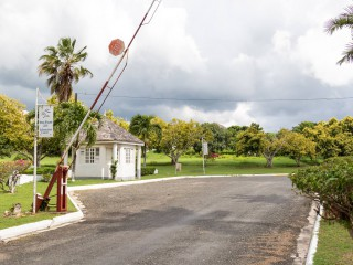 Residential lot For Sale in Twin Palms Estate, Clarendon, Jamaica