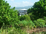 Commercial/farm land  for Sale, Chapelton, Clarendon, Jamaica  - (2)