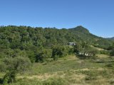Tanarchy, Clarendon, Jamaica - Commercial/farm land  for Sale