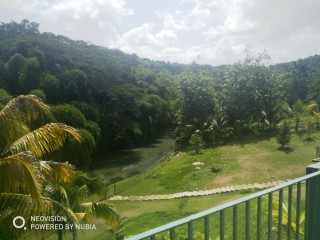 4 bed 5.5 bath House For Sale in Lethe Great River, St. James, Jamaica