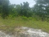 TOP HILL Westmoreland Shefeild, Westmoreland, Jamaica - Residential lot for Sale