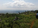Cedar Valley Plantation, Kingston / St. Andrew, Jamaica - Residential lot for Sale