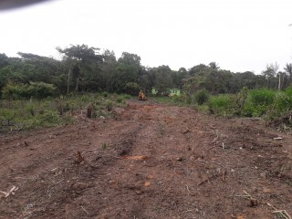 Residential lot For Sale in Friendship Over River, St. James, Jamaica